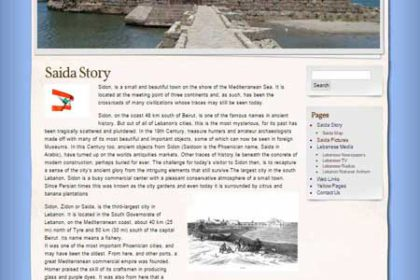 Saida-Online - web one design