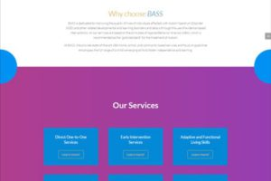 BASS ABA- Web One Design